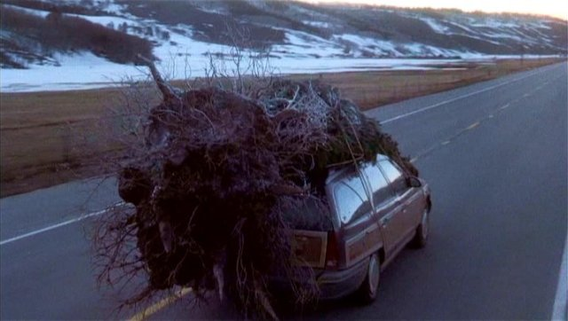 griswold-christmas-tree-car