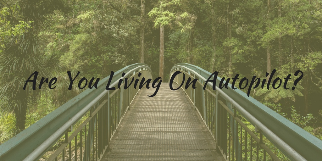 Are-You-Living-On-Autopilot_-1024x512
