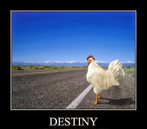 destiny-crop
