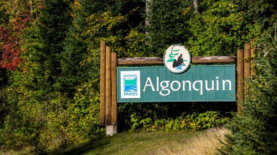 algonquin-park-sign-1000x562